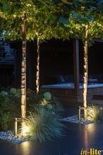 Verlichting in de tuin: aanlichten van mooie bomen.