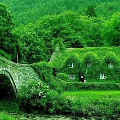 Blog post at Housekaboodle : I am still in England today, so to speak, showing enchanting English cottages.  These fairy-tale type cottages are in England and have ivy [..]