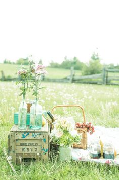 Picnic Engagement Shoot | Injoy Imagery | Picnic Basket |Vintage | Rustic |Country | Scotsdale Farm