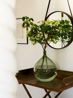 indoor plant arrangement on oversized vase
