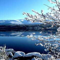 Winter Landscape in Cairngorms, Scotland