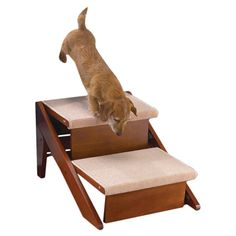 Convertible Pet Stairs - a doxie's best friend! :)