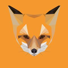 F is for Fox  Vulpes vulpes  A Leicestershire icon - cunning and crafty, with alert ears and the bushiest of tails.    This is a lovingly