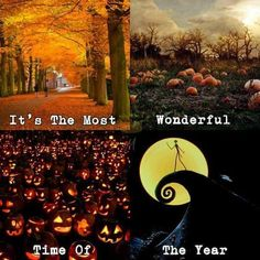 It's almost summer which means its almost Halloween Halloween fall autumn summer summertime nightmarebeforechristmas Halloween Quotes, Fall Halloween, Happy Halloween, Halloween Stuff, Halloween Party, Halloween Countdown, Haunted Halloween, Halloween Celebration, Halloween Goodies