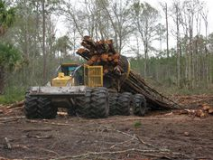 Timberjack clam bunk skidder with a load of logs Heavy Construction Equipment, Heavy Equipment, Tractor Pictures, Timber Logs, Caterpillar Equipment, Stuck In The Mud, Logging Equipment, Custom Big Rigs, Train Art