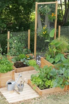 Perhaps you've had a desire to farm for a day off work. And some people may think that gardening is nothing more than planting some seeds on the ground and then waiting for good results or in… #GardeningDesign