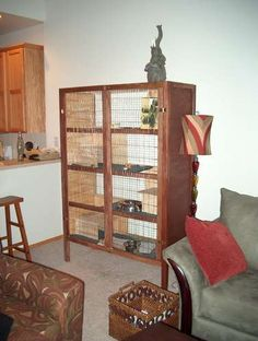 Rabbit cage i would add toys .. and some alfalfa but love the design