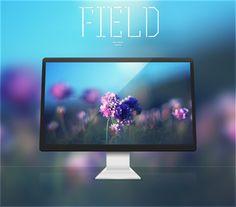 Field by Mushcube
