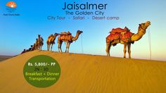 Camp in Indian Desert with live music & best food