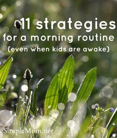11 strategies for a morning routine (when you can NOT wake up before the kids) - some good tips here.
