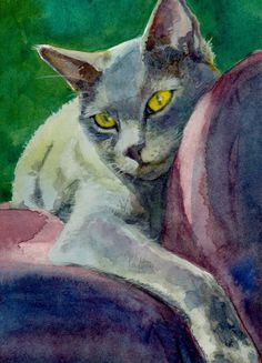 ACEO ATC Cat Portrait Lounging Russian Blue by bdelpesco on Etsy