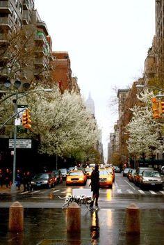 New York in The Rain | Haute In Manhattan