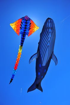 This whale kite would make me want to fly a kite!