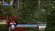 "It's becoming a holiday tradition here in Cleveland. ""Glow"" is underway for it's third year at the Cleveland Botanical Gardens. The event features dozens of trees, thousands of holiday lights and m..."
