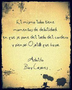 Adolfo Bioy Casares...