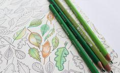 Art Materials Colouring Pencils etc #SecretGarden