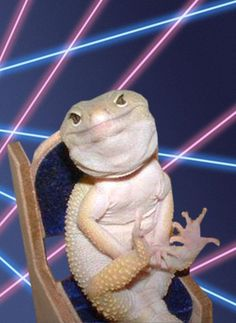 lizards and lasers