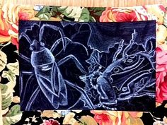 Room 9: Art! This blogger has stellar art projects for middle school level. I am doing the insect name designs- we could continue with chalk drawings and put them on a colorful background paper?