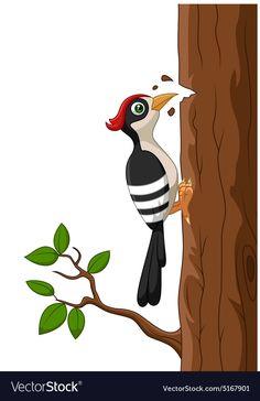 Woodpecker bird cartoon vector image on VectorStock Cartoon Drawings, Animal Drawings, Art Drawings, Dna Drawing, Drawing For Kids, Cartoon Birds, Cute Cartoon, Inkscape Tutorials, Doodle Art