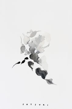 Evanesce — Satsuki Shibuya.