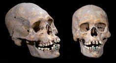 Maya-Langschädel mit dekorierten Zähnen nahe Teotihuacan entdeckt . . . http://www.grenzwissenschaft-aktuell.de/maya-langschaedel-mit-dekorierten-zaehnen20160713/
