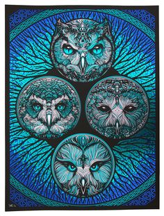 'Strange Attraction' (Blue Colourway) by Todd Slater Owl Tattoo Drawings, Owl Tattoos, Tattoo Ink, Arm Tattoo, Fish Tattoos, Sleeve Tattoos, The Secret Of Kells, Omg Posters, Owl Artwork