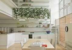 Corsica Street Apartment, For Rent in London - http://freshome.com/2008/11/06/corsica-street-apartment-for-rent-in-london/