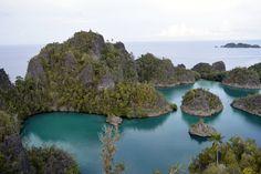 Last Minute Diving Trip to Raja Ampat. © Photo Cruising Indonesia