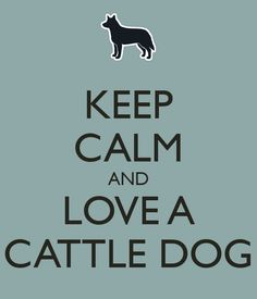 ceep calm and dogs | KEEP CALM AND LOVE A CATTLE DOG
