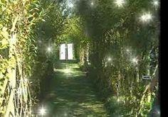 Le jardin de l'alchimiste (13) . En provence, jardin blanc, noir , rouge Eygalières