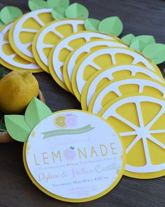 Precious Tips for Outdoor Gardens In general, almost half of the houses in the world… Watermelon Birthday Parties, First Birthday Parties, Birthday Party Themes, First Birthdays, Birthday Banners, Farm Birthday, Frozen Birthday, Pink Lemonade Party, Lemon Party