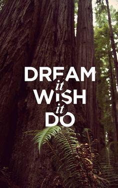 Dream it, wish it, do it.