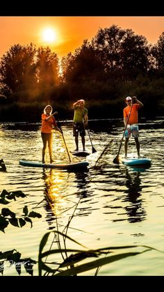 Nice Stand Up Paddle sunset in Holland 2017 www. Stand Up, Paddle, Holland, Golf Courses, Surfing, Sunset, Nice, Board, Pictures