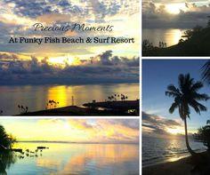49 best funky fish beach surf resort fiji images fiji fiji rh pinterest com