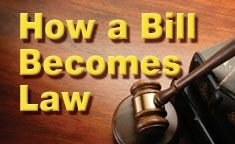 How a bill becomes law: What really happens to legislation and what YOU can do to make a difference in Illinois government Constitution Bill Of Rights, Illinois State, What Really Happened, State Government, Law, Day Planners, Bill Of Rights