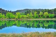 El bien y el mal | Good and bad  Laguna del Rey Ruidera #nature #photography