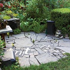 Making do weeds-style...using demo'd concrete as pavers, odds & ends of stones & bricks and metal signs...