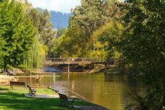 13 Best Porepunkah, Victoria images in 2013 | Buffalo, Water