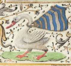 Swan, wearing billowing cape with arms of Sivry (barry of twelve argent and azure an estoile or) | Book of Hours | Belgium, perhaps Bruges or Valenciennes | ca. 1470 | The Morgan Library & Museum