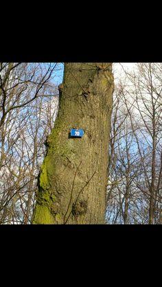 Όλα τα δέντρα στο Βερολίνο ΕΙΝΑΙ αριθμημένα και ΚΑΝΕΝΑ ταμπελάκι ΔΕΝ λειπει!