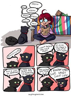 Cat Language Is Offensive When Human Speak It, By Anythingcomic