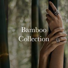 7 magnífico piezas de la colección de bambú