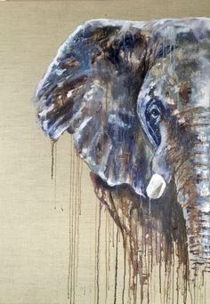 The Wild ones - Lions, Tigers, Elephants