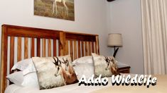 Addo Wildlife & Lifestyle Center WoW it was a great stay at Addo Wildlife Addo Wildlife Situated about 40 minutes from Port Elizabeth, Addo Wildlife is the p.