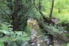 Φύση- Ποταμός- Κοιλάνι