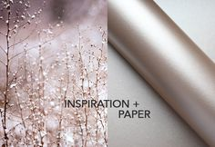 Inspiration + Paper = Glamour by Europapier Snow Flake, Glitters, Champagne, Blush, Range, Ice, Glamour, Texture, Cream