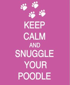 Love my poodles :)