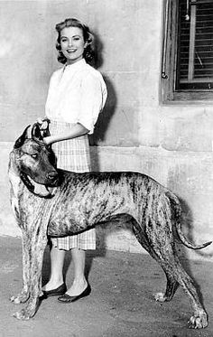 Grace Kelly with her great dane