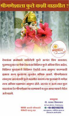 """ वास्तू / ज्योतिष /अंक शास्त्र - 3 Services in 1 Vastu Visit ! Guru Wallpaper, Kali Mantra, Ganesh Images, Vastu Shastra, India Culture, Pune, Ganesha, Christmas Bulbs, Lord"