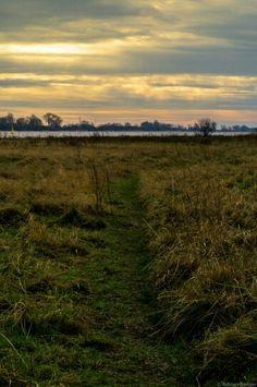 #Weser #Horizont #Wasser #Himmel